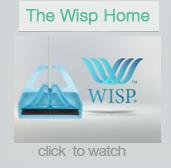 wisp-2